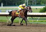 Kensei Ridden by Edgar Prado Wins The Salvator Mile Grade III  at  Monmouth Park in Oceanport , New Jersey on July 2, 2011. (Ryan Lasek / Eclipse Sportwire)