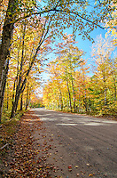 The view of a colorful autumn canopy along County Road 510. Negaunee, MI
