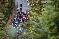 peloton from above<br /> <br /> 4th Liège-Bastogne-Liège-Femmes 2020 (1.WWT)<br /> 1 Day Race: Bastogne – Liège 135km<br /> <br /> ©kramon