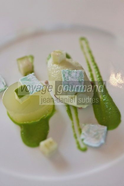 Europe/France/Aquitaine/40/Landes/Mont-de-Marsan:  Yaourt translucide à la cannelle et surprenante pomme verte, recette de Christophe Dupouy du Restaurant: Les Clés d'Argent,