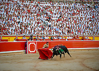 Spanish matador David Mora gives a pass to a El Pilar bull during the third corrida of the San Fermin Festival, on July 10, 2012, in the Northern Spanish city of Pamplona. (c) Pedro ARMESTRE