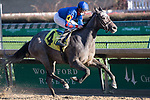 November 28, 2020: Charlie's Penny, trained by Chris Block and ridden by Julien Leparoux, wins Race 7, allowance optional claiming, at Churchill Downs in Louisville, Kentucky on November 28 2020. Jessica Morgan/Eclipse Sportswire.