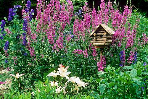 Fanciful log cabin birdhouse in colorful blooming flower garden,   summer  Missouri USA