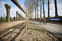 in the Nokere local laps<br /> <br /> 71st Nokere Koerse