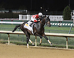 Fort Larned and jockey Brian Hernandez win the Stephen Foster at Churchill Downs for owner Janis Whitham and trainer Ian Wilkes; June 15, 2013
