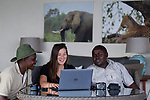 Cheetah (Acinonyx jubatus) biologist, Xia Stevens, reviewing photographs from lodge guides, Moses Mwale and Joseph Sandala, to identify individual cheetahs, Kafue National Park, Zambia