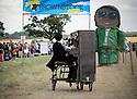 Brownstock Festival 2013