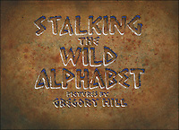 Stalking The Wild Alphabet