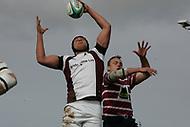 Taunton RFC v Shelford