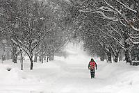"""A wintry blast engulfs Larry Stewart as he walks alone in snowfall in Spencer, Iowa.  He says he feels safer walking in the snow than driving in it, and summed up his thoughts of 2010's winter with a few simple words: """"don't like it.""""   Blizzard-like conditions are forecast for the northwest Iowa town, already reeling from about thirty inches of recently fallen snow."""
