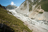 Terminus of Fox Glacier in 2014, Westland Tai Poutini National Park, South Westland, West Coast, World Heritage Area, South Island, New Zealand