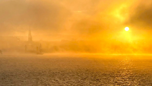 yachts in golden sunshine and fog