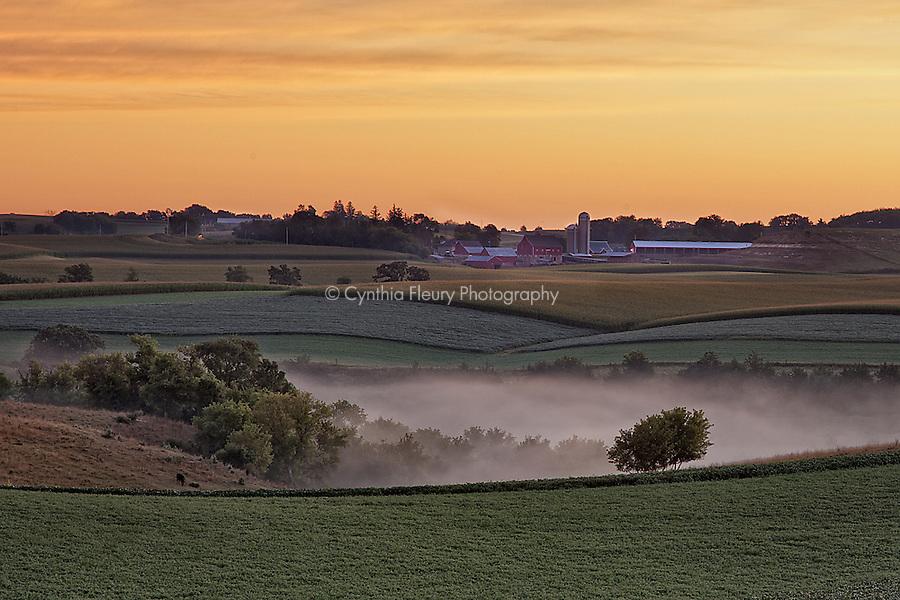 Fog in the valley Lanesboro Harmony MN area.