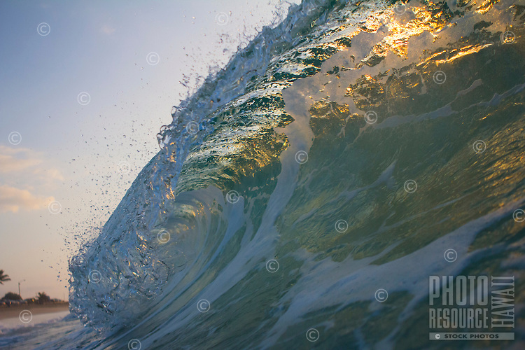Morning colors shine through a breaking wave at Sandy Beach, O'ahu.