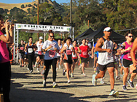 Hook & Ladder Run 2013