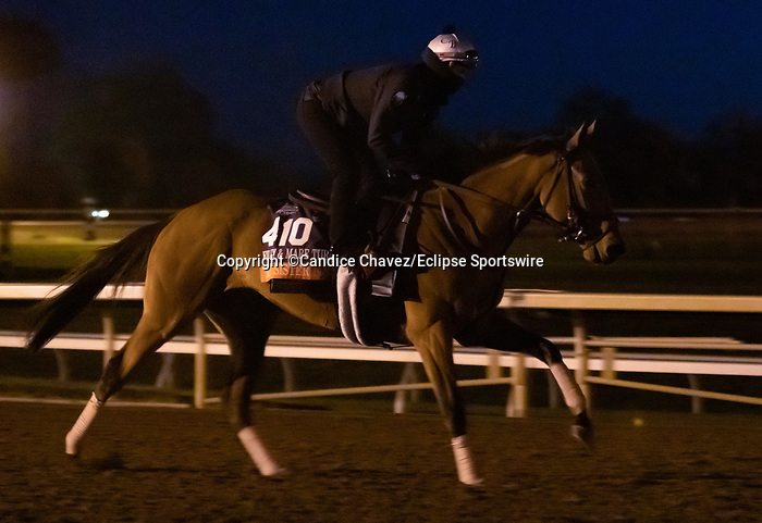 My Sister Nat, trained by trainer Chad C. Brown, exercises in preparation for the Breeders' Cup Filly & Mare Turf at Keeneland Racetrack in Lexington, Kentucky on November 4, 2020.