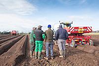 Potato planting - Shropshire, March