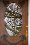 Wooden Door with Glass Reflecting Trees