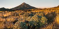 Sunrise over Taranaki, Mt. Egmont, Egmont National Park, North Island, New Zealand, NZ