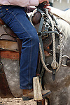 A cowboy carries a spare bridle around his saddle horn while watching competition at the annual Greeley Stampede Rodeo in Greeley, Colorado.