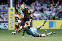 George Robson of Harlequins is tackled by Courtney Lawes of Northampton Saints during the Aviva Premiership match between Harlequins and Northampton Saints at the Twickenham Stoop on Saturday 4th May 2013 (Photo by Rob Munro)