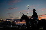 LOUISVILLE, KY - MAY 04: Scenes from around the track during morning workouts for the Kentucky Derby and Kentucky Oaks at Churchill Downs on May 4, 2016 in Louisville, Kentucky. (Photo by Scott Serio/Eclipse Sportswire/Getty Images)