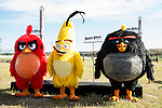"Red Bird, Yellow Bird and Black Bird, the characters of the film, during the presentation of the film ""Angry Birds"" at Hipodromo de Zarzuela in Madrid. April 25,2016. (ALTERPHOTOS/Borja B.Hojas)"