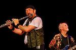 Jethro Tull in concert