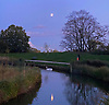 Moon rising over a swan on the boating pond on Hampstead Heath, N London.<br /> <br /> Stock Photo by Paddy Bergin