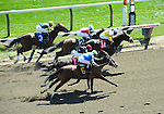 09 September 06: Mambo Fever (no. 1A), ridden by Rajiv Maragh, wins the 2nd race on Spinaway Stakes Day at Saratoga Race Track in Saratoga Springs, New York.
