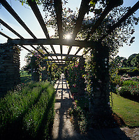 The afternoon sun casts shadows over the wooden framework of the pergola onto this stone-flagged path