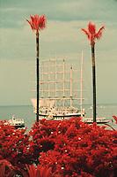 France/06/Alpes-Maritimes/Cannes: Voilier cinq mats dans la baie de Cannes