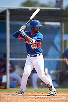 New York Mets Luis Carpio (97) during an Instructional League game against the Miami Marlins on September 29, 2016 at the Port St. Lucie Training Complex in Port St. Lucie, Florida.  (Mike Janes/Four Seam Images)