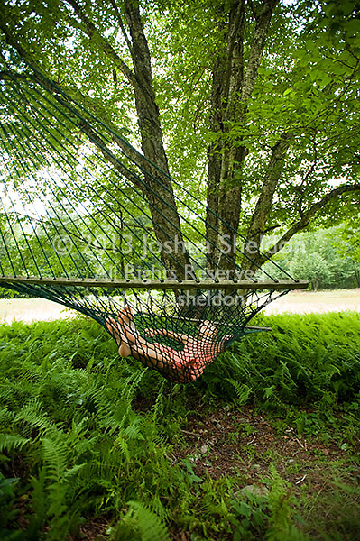 Young blonde woman laying in hammock