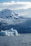 Alaska, Prince William Sound, Tiger Glacier, a tidewater glacier in  Icy Bay, Alaska, North America, USA, Note barking dog bergy bit in foreground, .