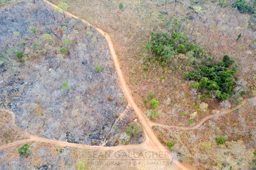 A burnt area of land in the Phnom Tnout Phnom Pok Wildlife Sanctuary, in Songkom Thmey District, Preah Vihear Province, northern Cambodia. The South East Asian country has one of the fastest rates of deforestation in the world and it is estimated only 3% of primary forest is left throughout the country. Forest clearance is fuelled by demand for agricultural land and high value species of tree for the Asian furniture market.