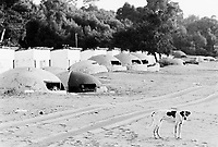 Albania. Province of Vlora. Diujakè. Old derelict bunkers on the beach and a dog. Enver Hoxha (1908-1985) decided in 1961 to protect his country from any invaders by investing in a massive fortification (more than a million bunkers were built over the years till 1985).  © 2003 Didier Ruef