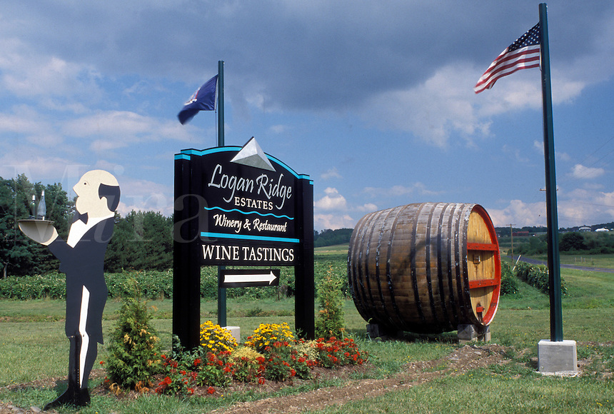 NY, Finger Lakes, Romulus, New York, Cayuga Lake, Logan Ridge Estates Winery sign on the Seneca Wine Trail in the wine growing region of the Finger Lakes.