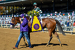 November 7, 2020 : Gamine, ridden by John Velazquez, wins the Filly & Mare Sprint on Breeders' Cup Championship Saturday at Keeneland Race Course in Lexington, Kentucky on November 7, 2020. Jessica Morgan/Breeders' Cup/Eclipse Sportswire/CSM