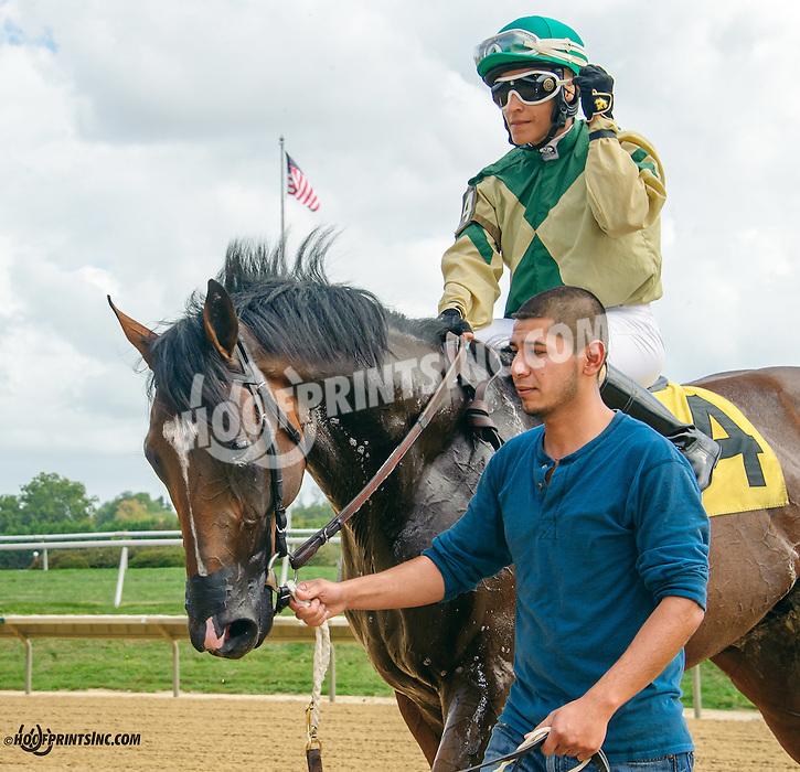 Carol Cedeno aboard Fashionable Freddy winning at Delaware Park on 9/29/15