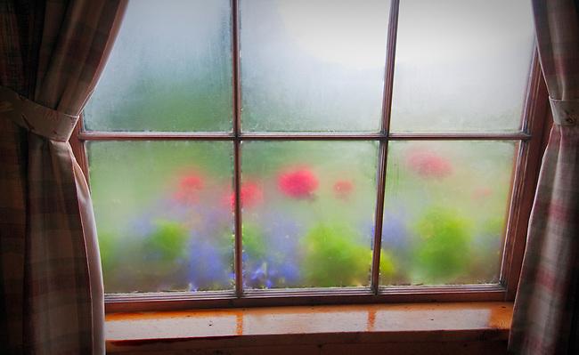Steamy windows at Kulik Lodge, Katmai National Park, Alaska.