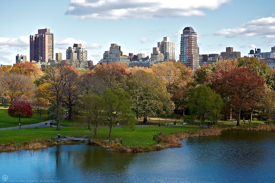Central Park in New York City showing off some of its beautiful fall color