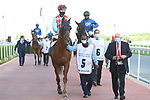 March 27, 2021: RED VERDON #5, in the post parade for the Gold Cup on Dubai World Cup Day, Meydan Racecourse, Dubai, UAE. Shamela Hanley/Eclipse Sportswire/CSM