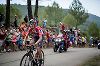 red jersey (overall leader) Dylan Theuns (BEL/Bahrein-Merida) losing his GC-lead up the steepest part of the brutal Mas de la Costa: the final climb towards the finish<br /> <br /> Stage 7: Onda to Mas de la Costa (183km)<br /> La Vuelta 2019<br /> <br /> ©kramon
