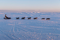 Matt Failor runs on the trail heading toward the finish at Nome on Wednesday March 14th during the 2018 Iditarod Sled Dog Race.  <br /> <br /> Photo by Jeff Schultz/SchultzPhoto.com  (C) 2018  ALL RIGHTS RESERVED