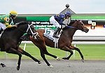 09 October 10: Noble's Promise (no. 6), ridden by Willie Martinez and trained by Kenneth McPeek, wins the 96th running of the grade 1 Breeders' Futurity Stakes for two year olds at Keeneland in Lexington, Kentucky.