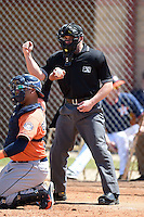 Umpire John Mang during a spring training game between the Detroit Tigers and Houston Astros on March 21, 2014 at Osceola County Complex in Kissimmee, Florida.  (Mike Janes/Four Seam Images)