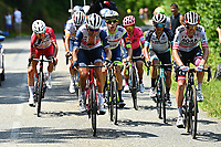 10th July 2021; Carcassonne, France; MOLLEMA Bauke (NED) of TREK - SEGAFREDO during stage 14 of the 108th edition of the 2021 Tour de France cycling race, a stage of 183,7 kms between Carcassonne and Quillan