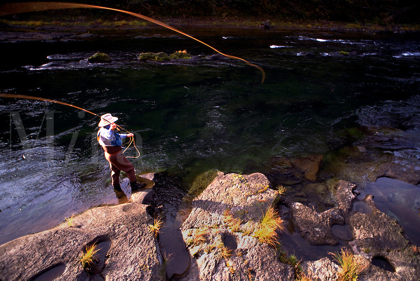 Overview of a fly fisherman casting his line in the North Umpqua River. Oregon.