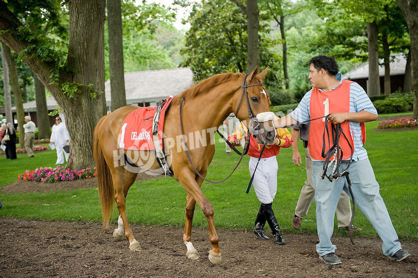 Sand Witchh in the paddock at Delaware Park on 7/4/09